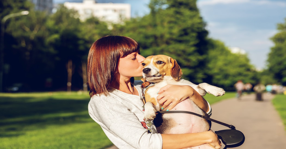 Positive Dog Training with Healthy Dog Training Treats